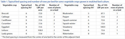 using the linear bed foot system for vegetable fertilization