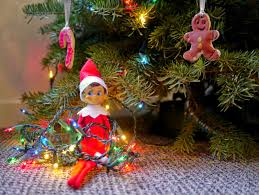 How To Put Christmas Lights On A Tree by Little Hiccups Elf On The Shelf Week 3