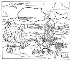 healty habitat sea animal coloring download u0026 print