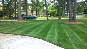 spring landscaping spring lawn care and landscaping tips angie s list