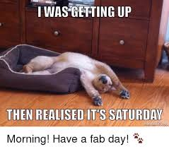 Fab Meme - i was getting up then realised its saturday morning have a fab
