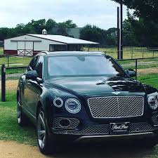 bentley falcon suv for luxury bentley dream pinterest cars and dream machine