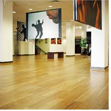 Home Decorators Collection Bamboo Flooring Formaldehyde Floor Plans Bamboo Flooring Pros And Cons For Home Flooring