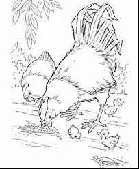 surprising chicken coloring page farm animals with farm coloring