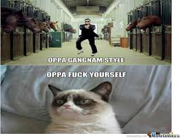 Angry Cat Memes - angry cat by princeofjava meme center