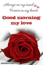 best 25 good morning my love ideas on pinterest good morning