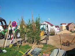 garten und landschaftsbau stuttgart garten und landschaftsbau in filderstadt stuttgart