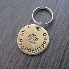 baby dog tags best 25 dog tags for dogs ideas on personalized dog