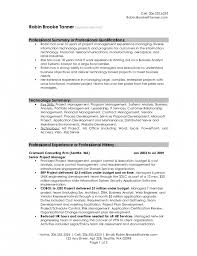 It Resume Summary Examples Of Professional Resumes Example Sales Professional