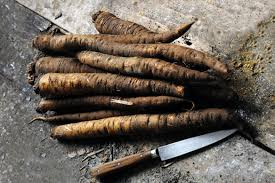 Spanish Root Vegetables - forgotten vegetables recipes salsify by relais u0026 châteaux chefs