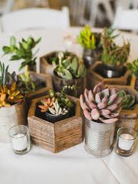 27 diy wedding decorations for any skill level potted succulents