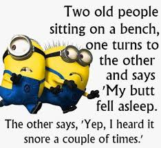 43 Best Funny Images On - top 43 best funny minions quotes and picture kanjar