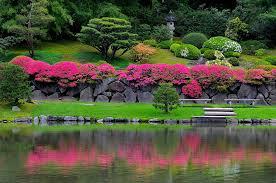 Rock Garden Seattle Azaleas The Rock Wall Seattle Japanese Garden Flickr