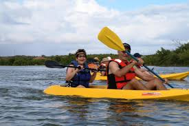 shore excursion clear kayaking u0026 eco safari grand turk