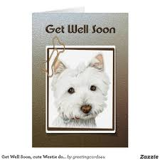 Cute Dog Products by Get Well Soon Cute Westie Dog Greeting Card Dog