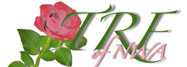 rose theme alpha 3 tea rose foundation akapao alpha kappa alpha sorority inc phi