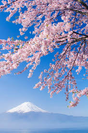 401 best japan the country of cherry blossoms images on pinterest