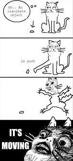 Cartoon Cat Memes - 20 of the best exles of cat logic bored panda