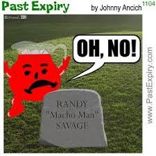Randy Savage Meme - past expiry cartoon more cartoon macho man randy savage