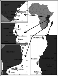 Map Of The South Map Of The Areas Trawled During The South West Indian Ocean
