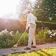 gardening martha stewart