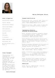 cfo resume sample marina rodriguez sotoca 2013 cv