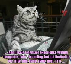 Memes About Writing Papers - essay humor college essay writing help to use humor or to you know