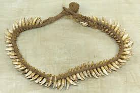 tooth necklace images Flying fox bat teeth necklace from papau new guinea jpg