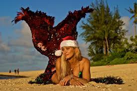 christmas holidays in hawaiioahu surfing experience