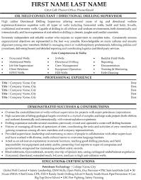 professional resume exles top professionals resume templates sles
