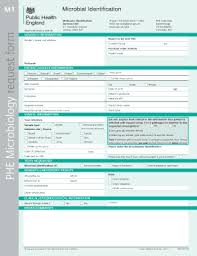 fillable sample terms and conditions for services edit print