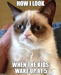Sad Kitten Meme - kitten memes that sum up motherhood owlet blog