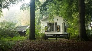 forest house 2 by danimatie on deviantart