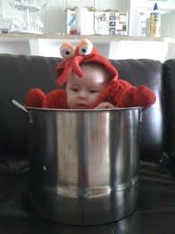 Funny Halloween Costumes Baby 36 Cute Baby Costumes Images Baby Costumes