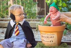baby harry potter themed photoshoot goes viral