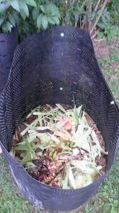 backyard composting real food forever
