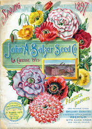 cheap seed packets vintage packaging flower seed packets from the 1800s the