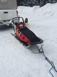 maryland sled dog adventures llc about your dog sledding guides
