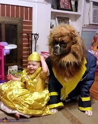 Beauty Beast Halloween Costumes 19 Dog Owner Costumes Win Halloween