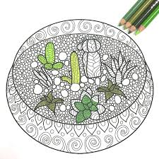 free coloring book pages with succulent terrariums