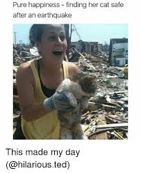 Earthquake Meme - pure happiness finding her cat safe after an earthquake this made