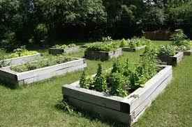 Ideas For School Gardens Ideas For School Gardens School Garden Ideas Colinsco Minimalist