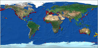 New Zealand On World Map Submarine Canyons Hotspots Of Benthic Biomass And Productivity In