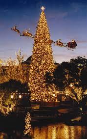 christmas tree lots los angeles beatiful tree