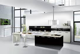 salon et cuisine moderne cuisine noir et blanc laque salon moderne chic homewreckr co