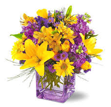 free flowers morning free flowers e card at iflowers florist