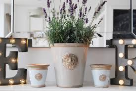 royal botanical gardens plants and candles brick dust u0026 glitter