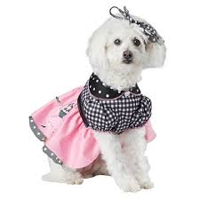 pet costumes pet costumes for dogs and cats selection for