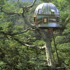 Cool Tree Houses 107 Best Treehouses In The Garden Images On Pinterest