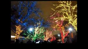 Lincoln Park Zoo Light Hours by Lincoln Park Zoo Lights 2013 Youtube